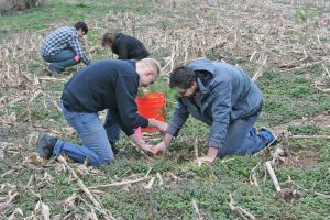 Kendra Peek/kendra.peek@amnews.com Centre College students Evan Whitis, front left, and Ben Russak, front right, plant a tree with their classmates, Ben Finch, back left, and Tyree Wilmoth, back right.