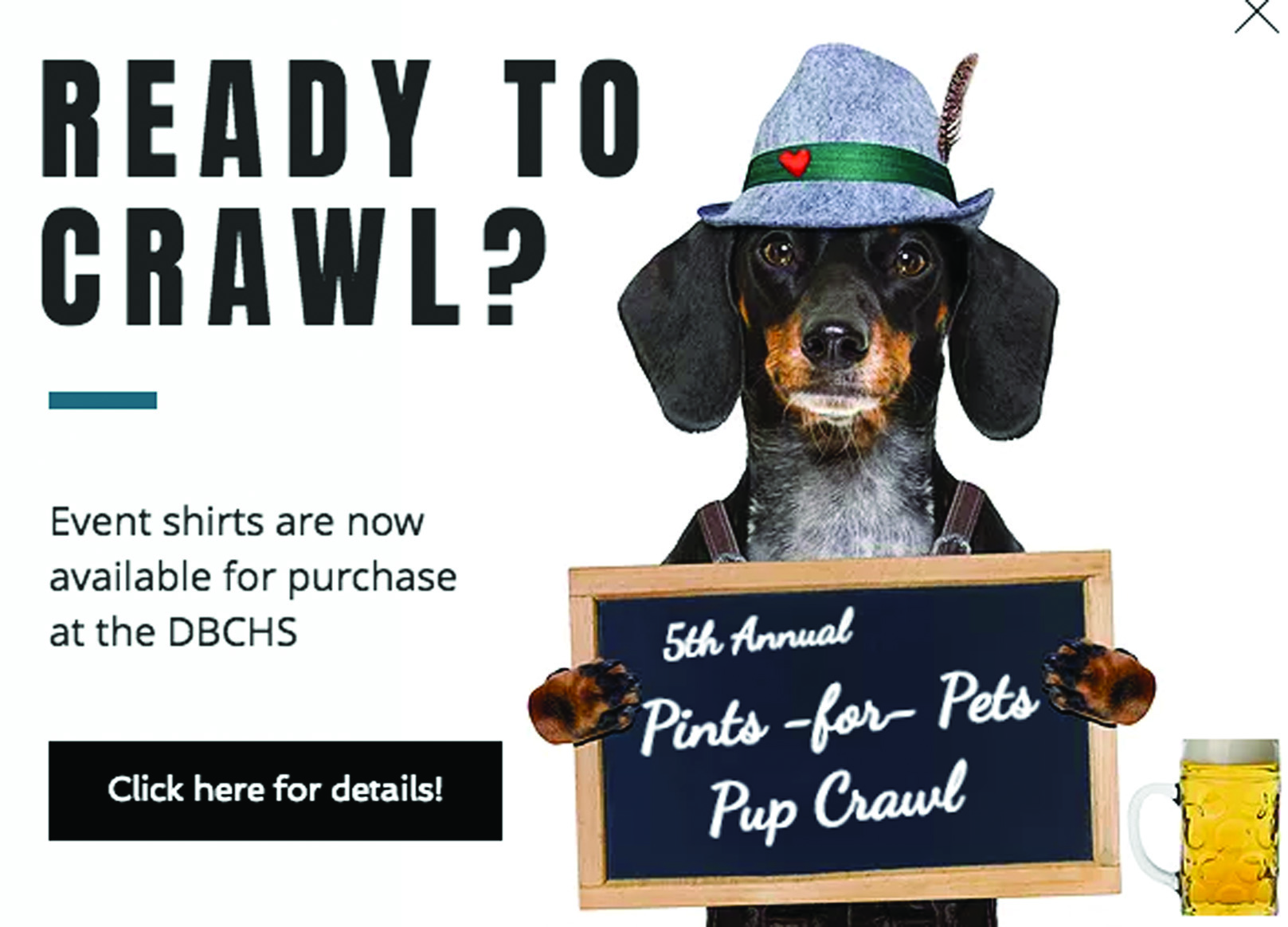Pup Crawl Returns Saturday To Benefit Danville Boyle County Humane Society The Advocate